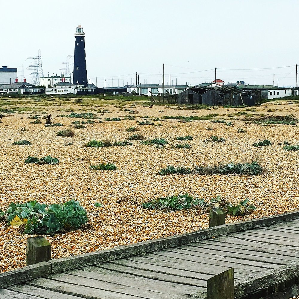 dungeness-travel-blogger-blog-beach-british-theinkcloset.JPG