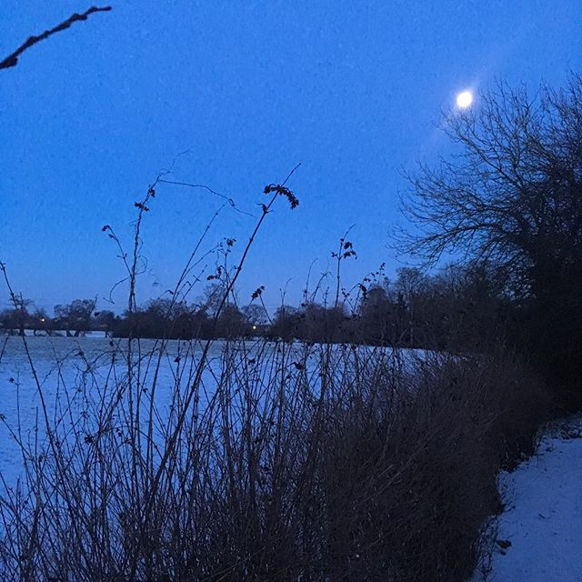 Very still & very cold outside on my way to shut the hens in for the night, but also very beautiful! #snow #hens #moon #february #itsthelittlethings #littlemoments #love #oswestry #shropshire