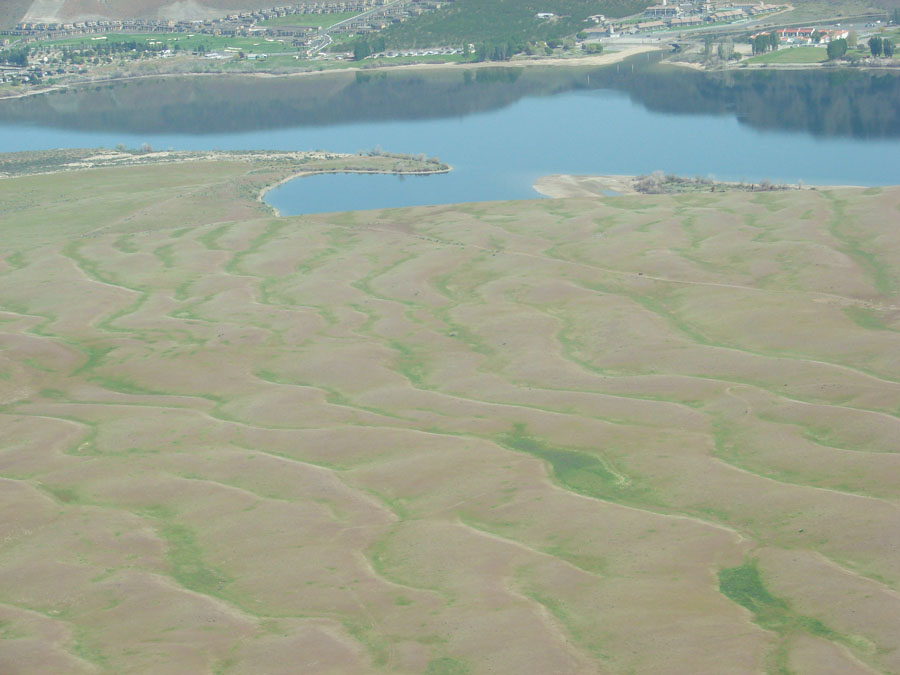 Giant Ripples in the Columbia River Basin