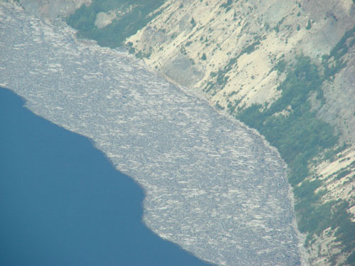 Debris still on Spirit Lk from the Mt. St. Helens Blast