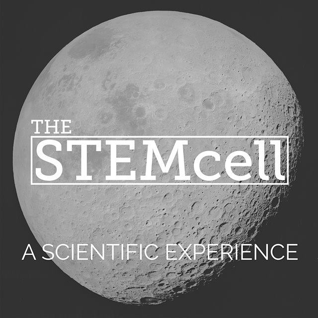 The STEMcell   Specializing in science, technology, engineering and math (STEM) products, the STEMcell is an oasis for the curious and creative. Garage-inventors, tinkerers, and mad scientists welcome.