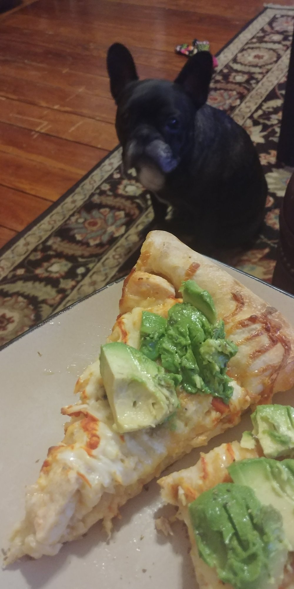 We had an avocado that was about to go back so we threw it on top, because why not?!  Our doggie visiter tried really hard to get some of this pizza so be guard it with your life!