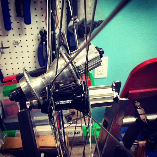 What is old can become new when you put enough love into it.  #campy #bikes #longmont #bianchiusa