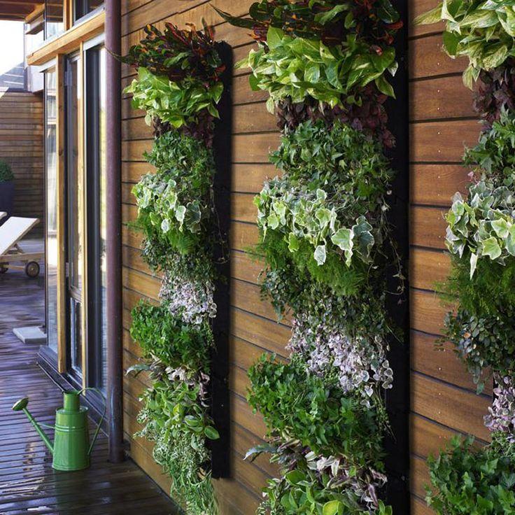 0c3a1237d0758d0e924fed9e347ba767--vertical-herb-gardens-vertical-planting.jpg