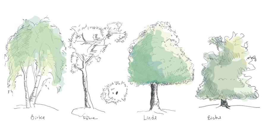 Tree Habitus Illustrations  hand drawn and edited and coloured with Photoshop.