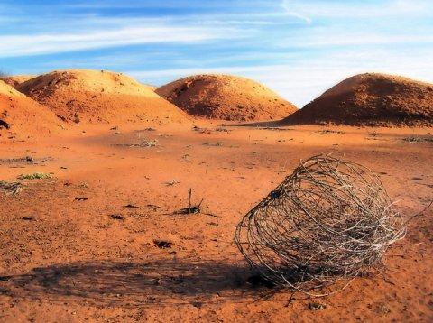 tumbleweed-empty-desert.jpg