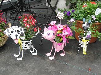 catanddogpot.jpg