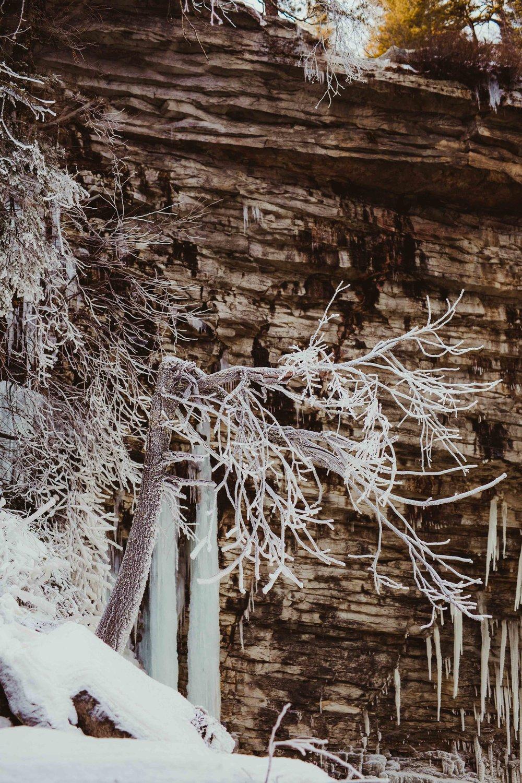 wildescoutphotoco-hudson-valley-mountain-vow-renewal-wedding-100