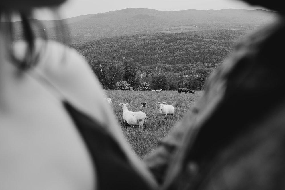 WSPCo-06042017-Lauren-Steve-Vermont-Mountain-Engagement-Photography-42.jpg
