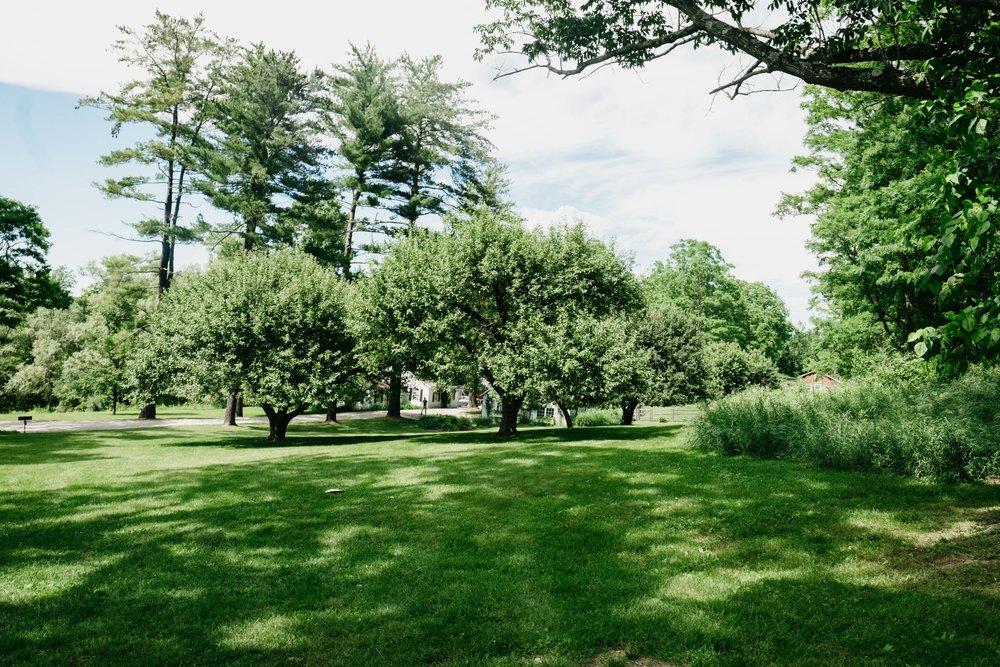 WSPCo-06242017-Hallie-Sam-Connecticut-Family-Farm-Wedding-Photography-2.jpg