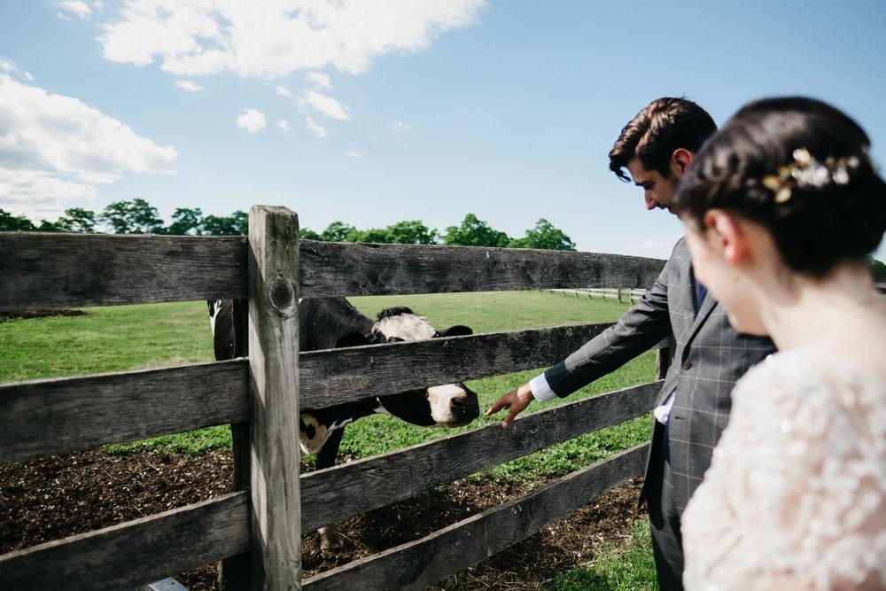 WSPCo-06242017-Hallie-Sam-Connecticut-Family-Farm-Wedding-Photography-59.jpg