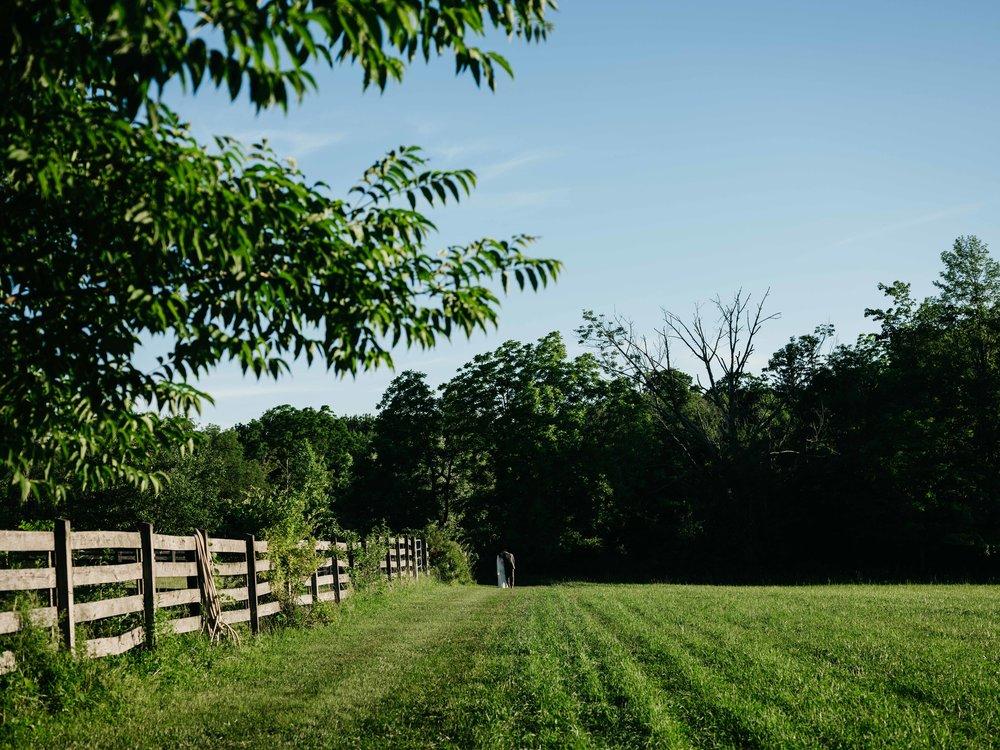 WSPCo-06242017-Hallie-Sam-Connecticut-Family-Farm-Wedding-Photography-119.jpg