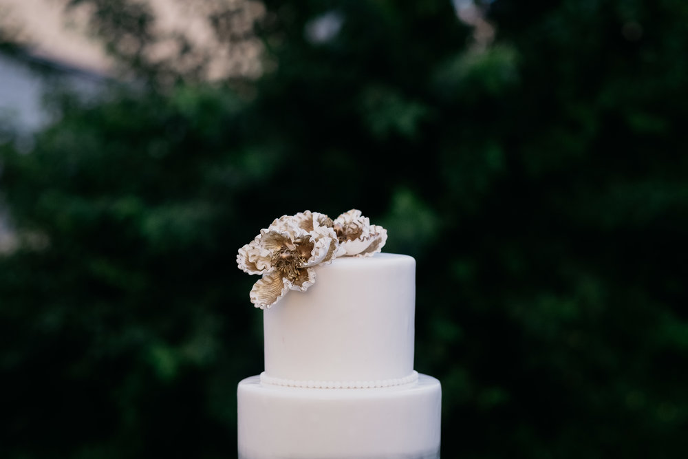WSPCO-08122017-DaJa-Odalis-Wedding-Preview-174.jpg