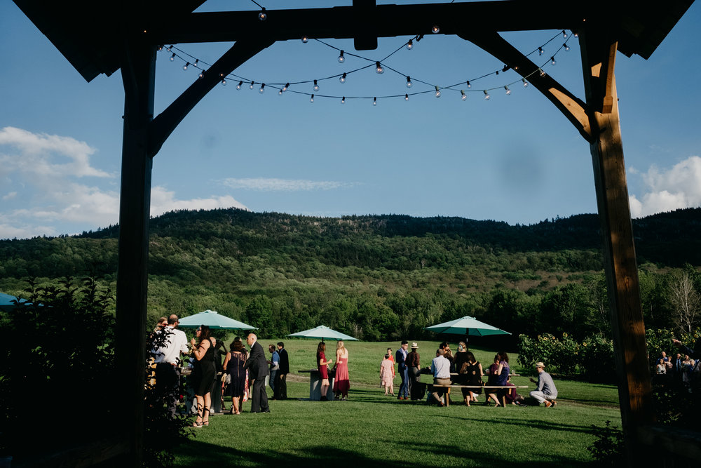 Wiilde-Scout-Photo-Co-Lauren-Steve-Bliss-Ridge-Wedding-Moretown-Vermont-190.jpg