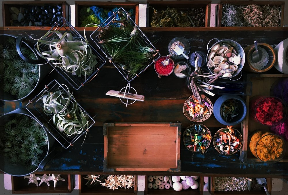 TERRARIUM BAR - At Seagrass Studio, YOU can customize a terrarium to best fit YOUR style!