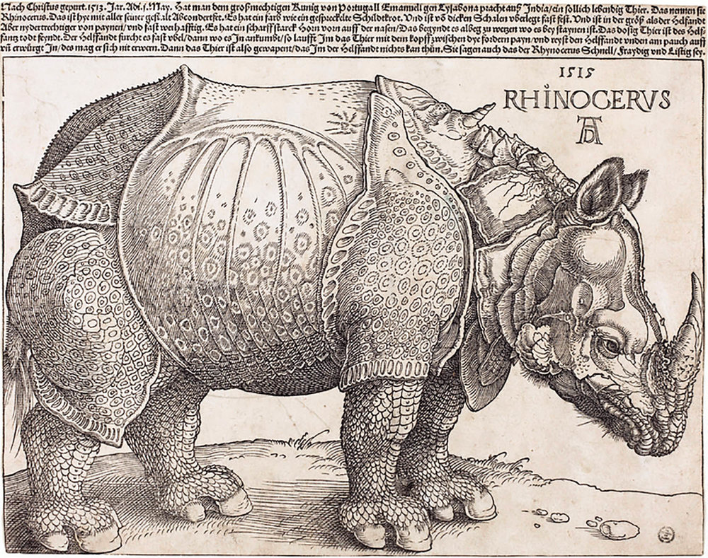 """Rhinoceros"" by Eugène Ionesco"