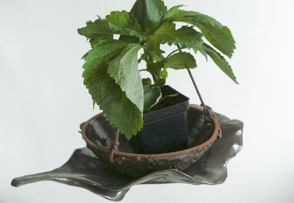 KMBK8 Hanging Nest Pot On Leaf