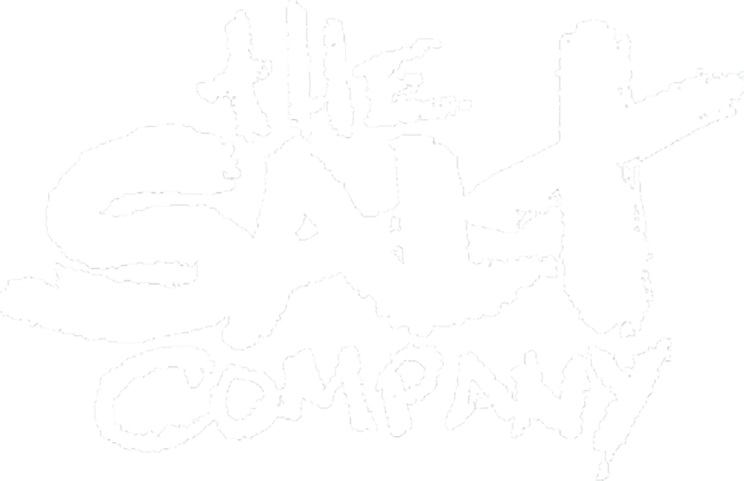 The Salt Company