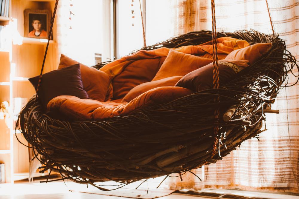 nest swing_2016_00001.jpg