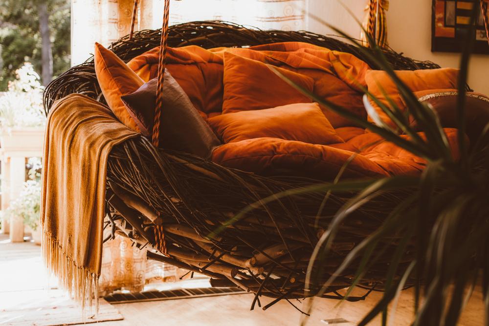 nest swing_2016_00003.jpg