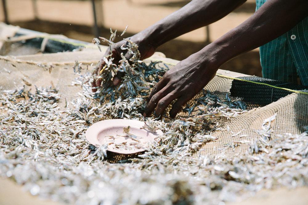 uganda-ajws-christine-han-photography-105.jpg