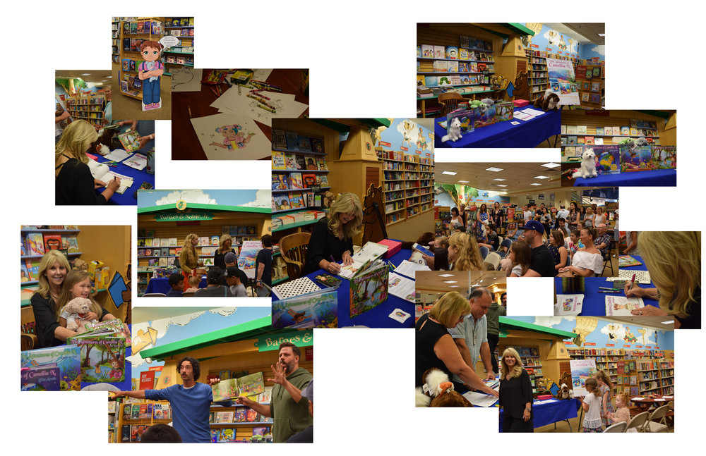 collage barnes and noble.jpg