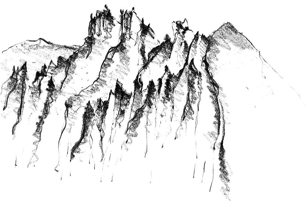 Shoshone forest.jpg