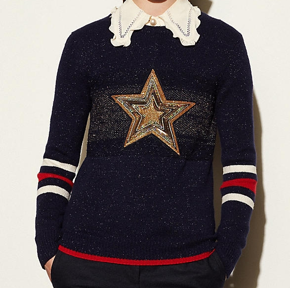 COACH WOOL GLITTER STAR SWEATER