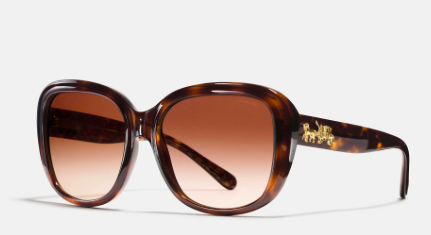 COACH HORSE  & CARRIAGE SOFT SQUARE SUNGLASSES