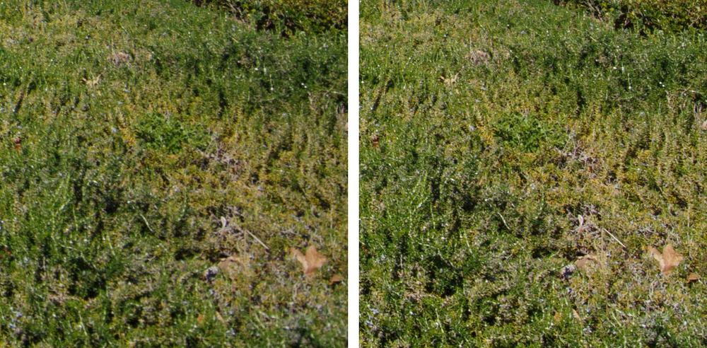 11-24L Corner Crops: f/4 (Left) and f/8 (Right).