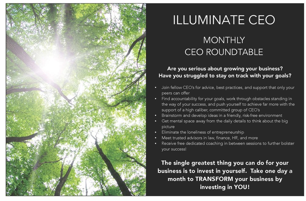 Illuminate CEO HUB101_Page_1.jpg