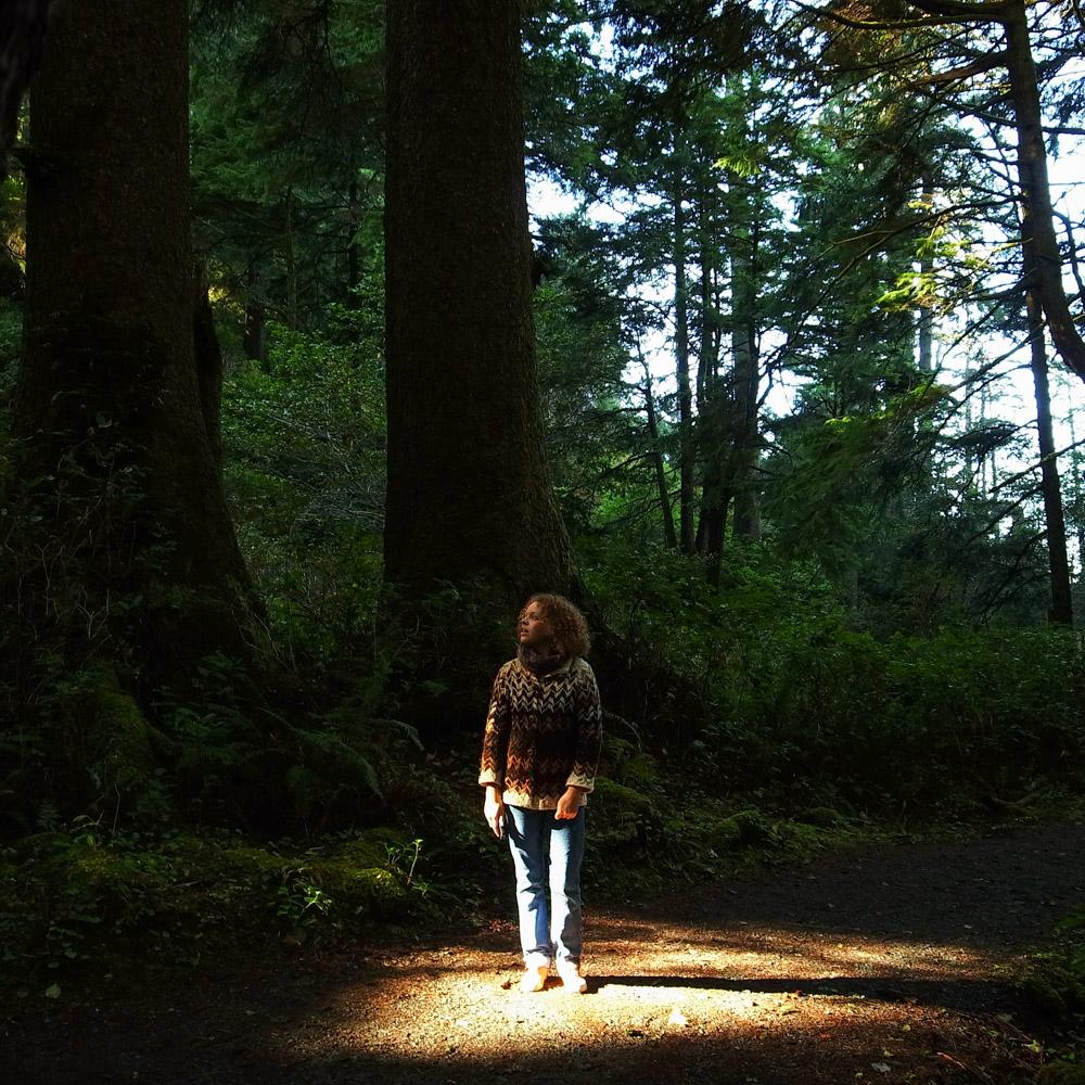 forestspotlight.jpg