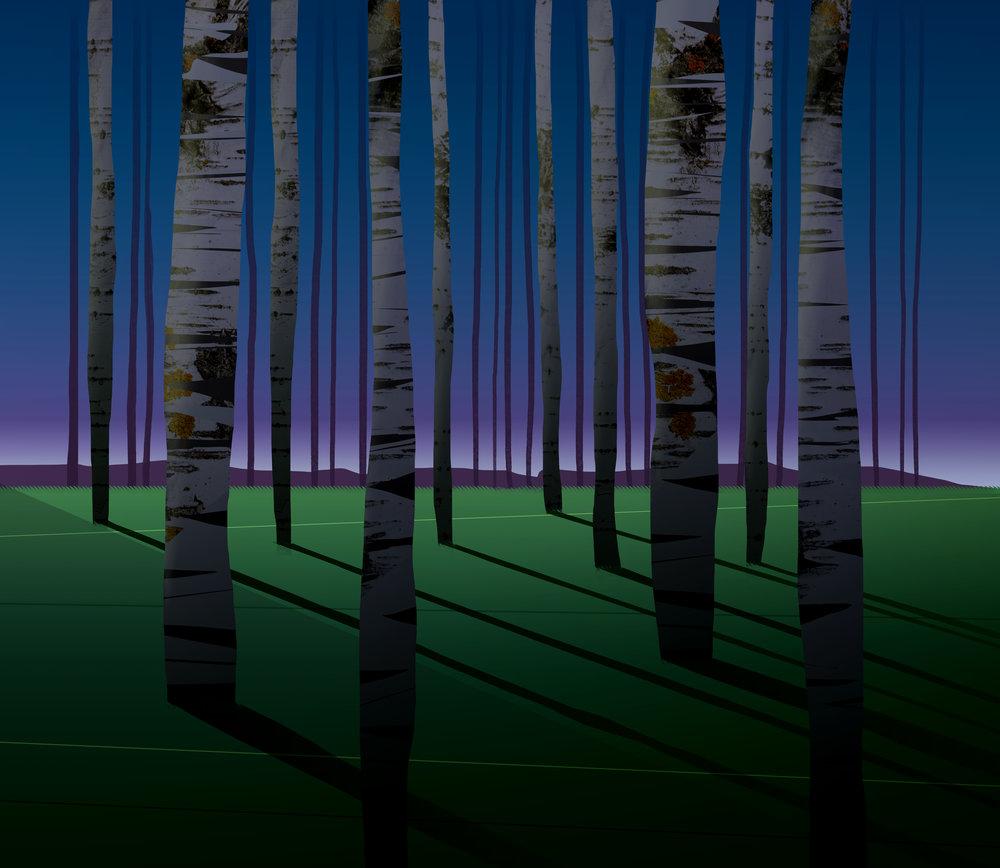 Forest_03Night.jpg