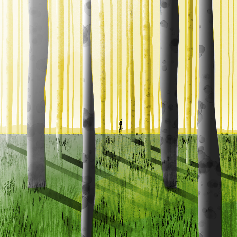 Forest_01Morning.jpg