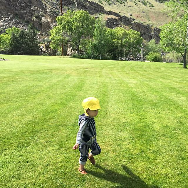 So thankful for sunny days and room to run! (and for little leather moccasins and bright, poppy sun caps!!) 😆 #letthembelittle #wildandfree . . . . . #childrenofmountains #toddlerlife #getoutside #adventureisoutthere #explore #childhoodunplugged #little #leather #toxinfree #sustainable #vegtanned #moccasins #softsole #grounded #zerodrop #natural #naturaldevelopment #balanced #barefoot #madeinusa #pnw #centralwashington #wenatchee