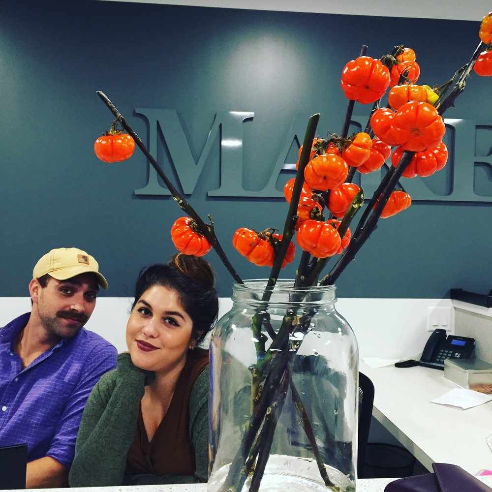 MakeOffice: where they get living pumpkin flowers