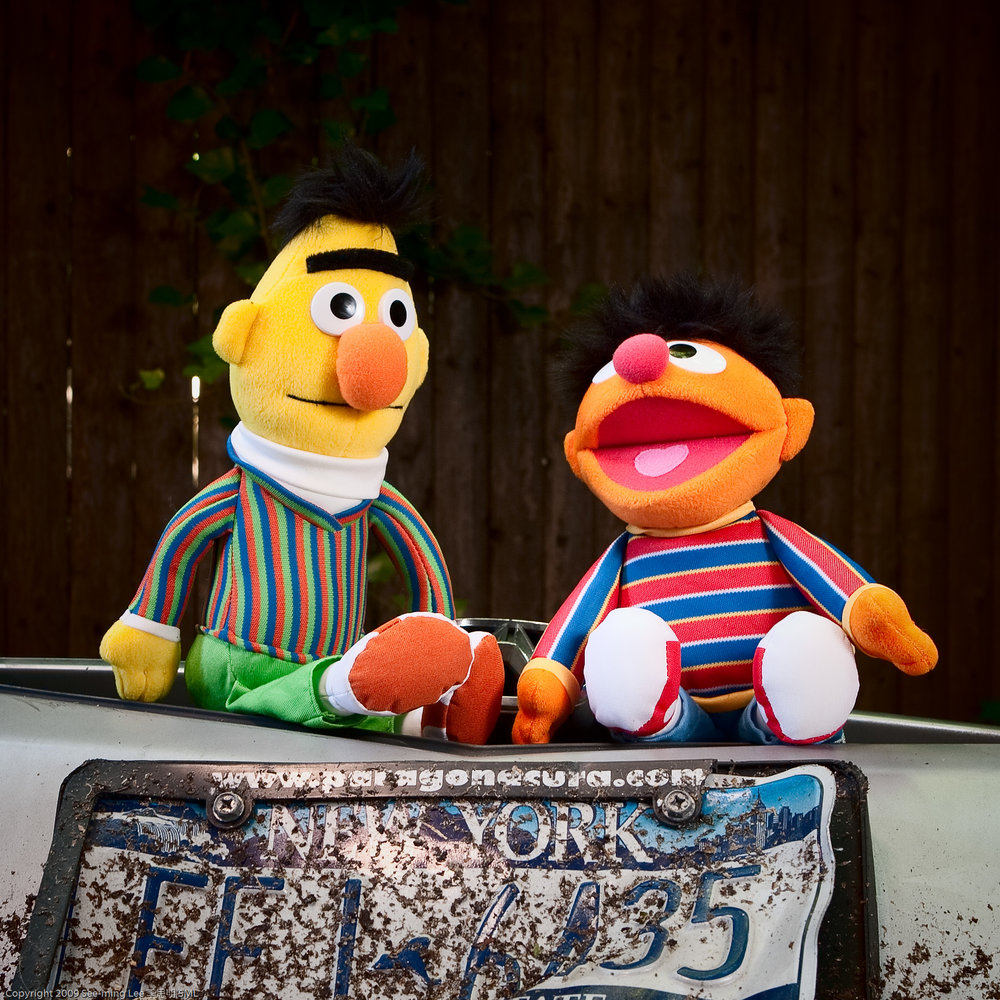"""Photo Credit:""""Bert and Ernie: Life is great when you're next to me"""" by See-ming Lee via Creative Commons."""
