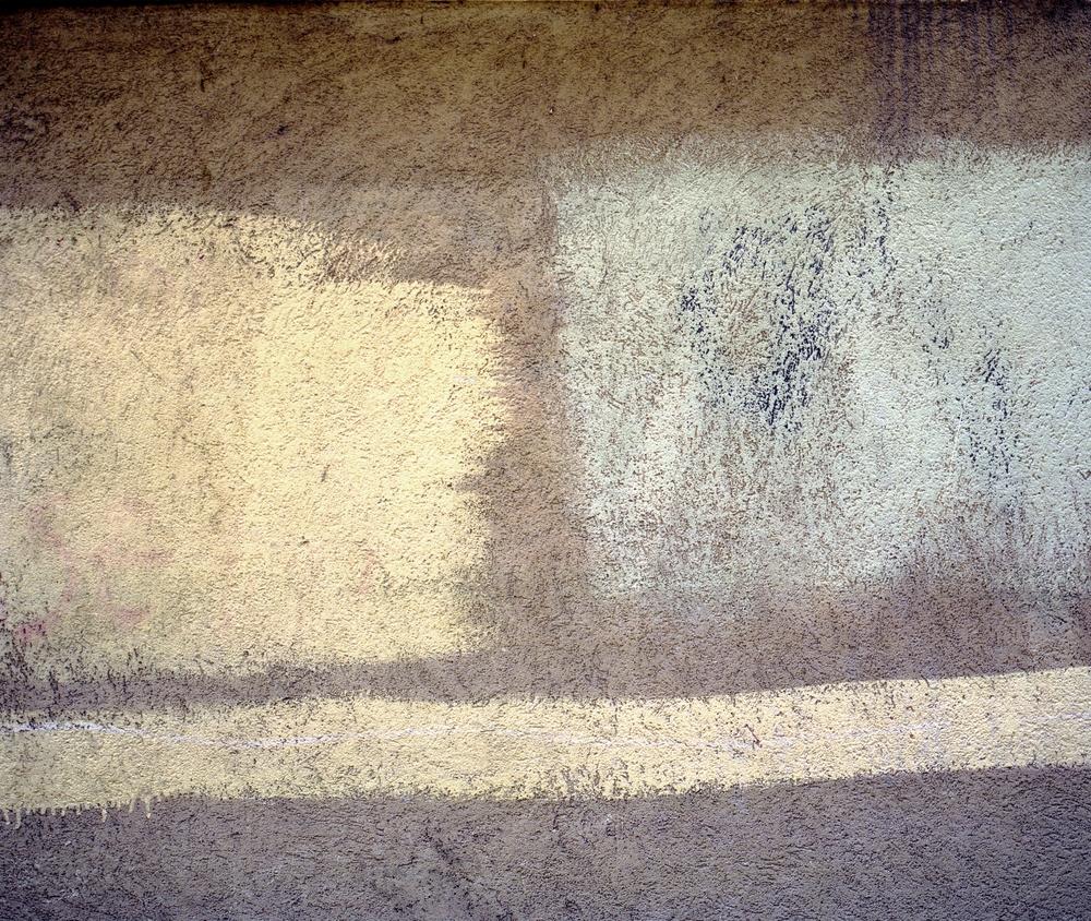 Paint on Wall-Leaf.jpg