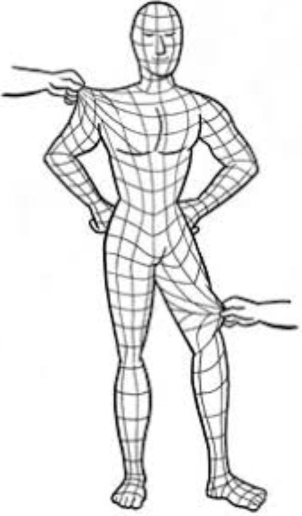 fascia bodysuit.png