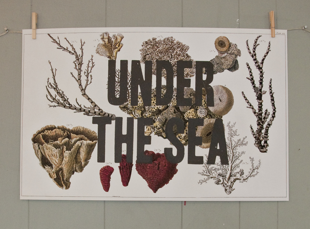 under-the-sea.jpg