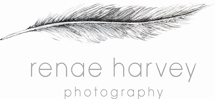 Renae Harvey Photography