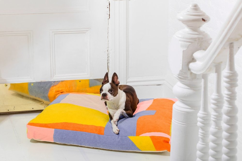 - MAP DOG BED OR FLOOR PILLOW $168