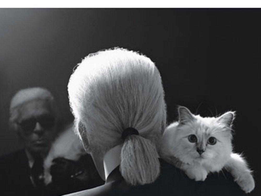 Karl Lagerfeld on Choupette  //  DNAMAG