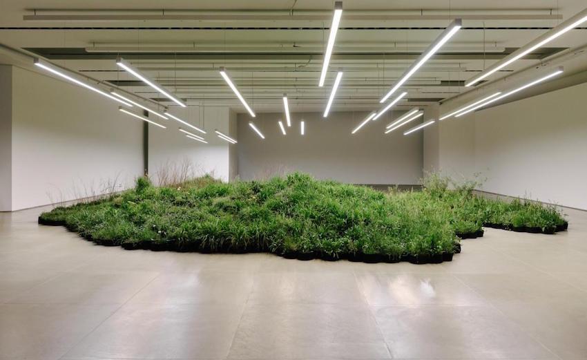 Linda Tegg's installation for Jil Sander