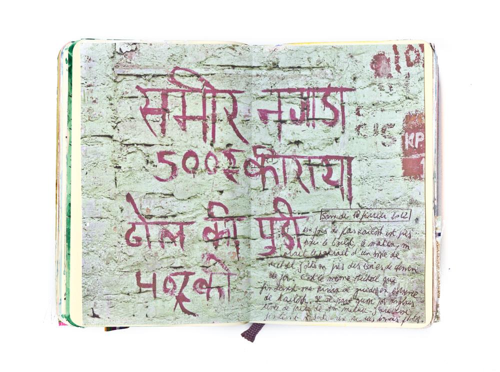 carnet-inde-thomas-van-den-driessche-17903.jpg