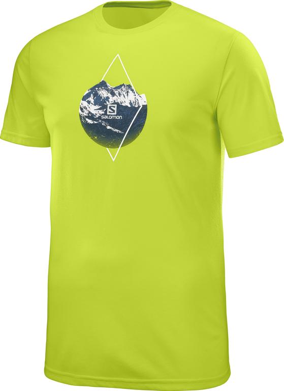 400558_m_xalpgraphicsstee_acidlime_t-shirt.jpg