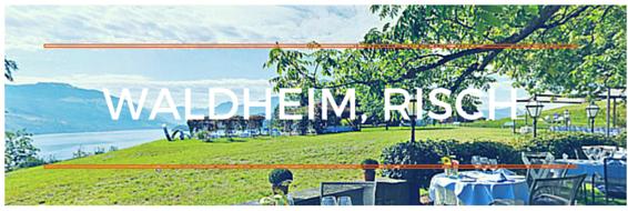 Panoramabild Waldheim