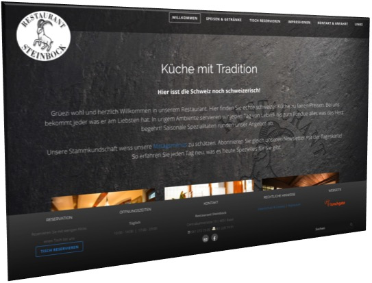 Webseite Steinbock Basel