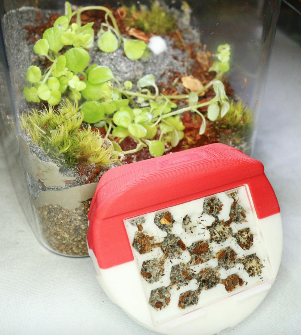byformica small formicarium.png