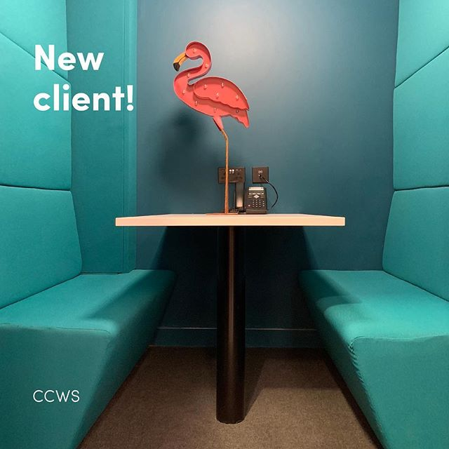 CCWS NEW CLIENT  Interior design isn't just confined to the home, it's just as important in the workplace. Our latest client CCWS are innovators in extremely cool office design and we're excited to be working with them on their PR, Social Media and much more!  #interiors #officedesign #interiorsmarketing #marketing #design #workplace #digital marketing #socialmedia